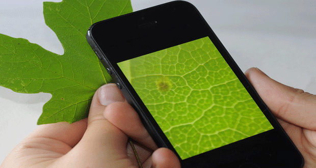 Il microscopio arriva sul tuo smartphone